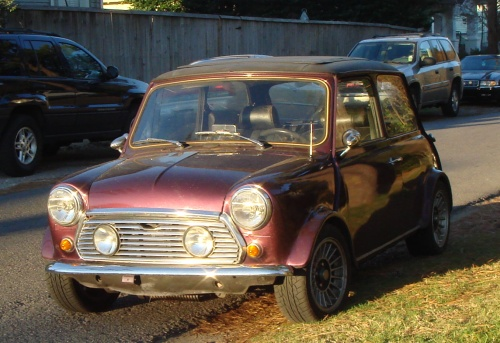 mini, so cute!